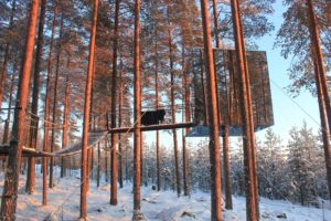 Treehotel The Mirror Cube Harads Swedish Lapland